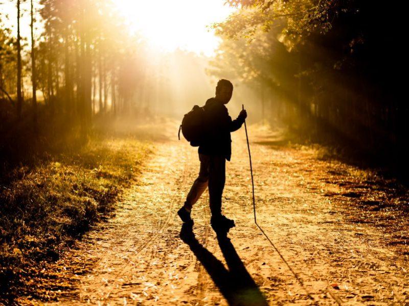 Aká je správna technika pre nordic walking? +  Tipy na tréningy