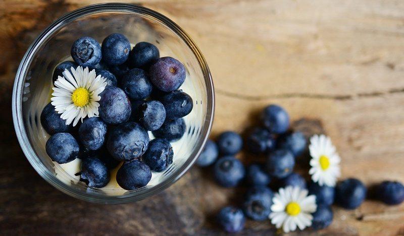 Čučoriedky a ich účinok na zdravie – prečo ich zaradiť do jedálnička?
